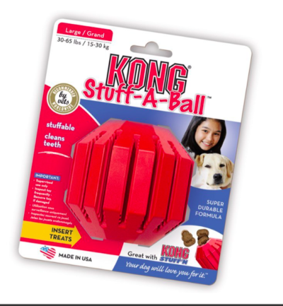 Kong chew toy for dogs