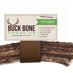 Buck bone Elk