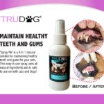 dog breath freshener spray
