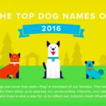 dogname2016