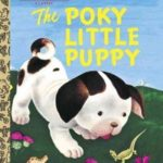 dog news the little puppy book