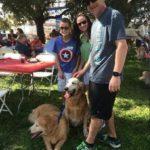 dog news dog park