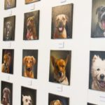 dog news dog portraits