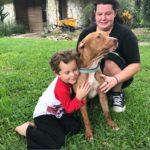dog news hero dog