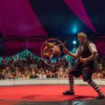 dog news Chicago circus