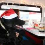 dog news Christmas