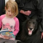 dog news therapy dog