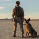 dog news K9 Veterans Day