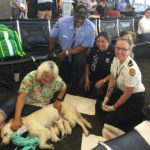 dog-news-Florida-airport