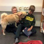 dog-news-Finland