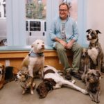 dog_news_NewYork