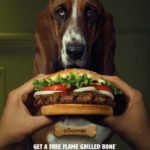 dog_news_Burger