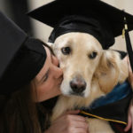 dog_news_ServiceDog