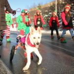 dog_news_Christmas_parade