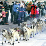 bear grease-sled-dog-marathon-2019