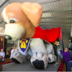 Mardi_Gras_dog_parade