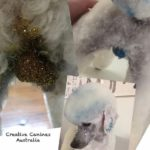 dog-grooming-Trend