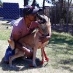 Hero_dog_South_Africa