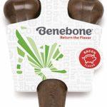 Benebone_dog-toy