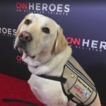 service_dog-honor