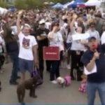 dog-walking-texas