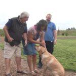 dog-reunion