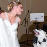 bridedancewithdog