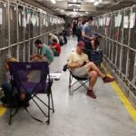 July 4th dog shelter