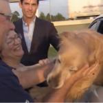 Texas dog reunion