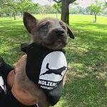 Breeder of law enforcement dogs giving pup to military veteran.