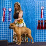 Albuquerque trainer and her dog competing on 'America's Top Dog' reality show.