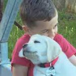 After losing dog in fire, family gets puppy from community.