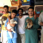 Animal rescue charities are in a race against time to get staff and pets out of Afghanistan.